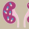 流行的胃灼热药物与逐渐但沉默的肾脏损害有关