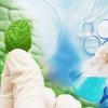 新型创新性骨关节炎药物的临床试验