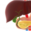 优化治疗可缓解慢性胰腺炎的疼痛