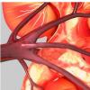 急性肾脏损伤是del 妄昏迷的危险因素