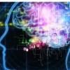 脑损伤快速检测获得FDA突破性地位