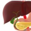 及时施用抗生素可减少肝硬化 UGIB的死亡