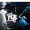 研究发现 流感鼻喷雾剂可提供与流感预防针类似的流感防护