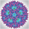 领先的基孔肯雅热疫苗进入临床试验第二阶段