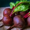 甜菜根化合物可以帮助减缓阿尔茨海默氏病的进展