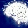 研究人员发现脑震荡的生物标志