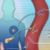 研究称 肿瘤渗入血液的DNA可以预测癌症患者对免疫疗法的反应