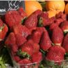 北欧饮食降低不良胆固醇 发现斯堪的纳维亚研究