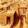 古代哈拉潘女人的研究人员基因组序列