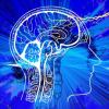 研究人员鉴定出104种精神分裂症的高风险基因