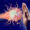 发现导致粘膜自身免疫性疾病的分子开关