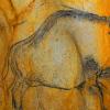 冰河时代洞穴艺术中隐藏的野牛与牛的神秘混合