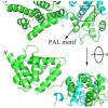 分子图提供了锌相关疾病的线索