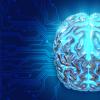 研究人员在加利福尼亚检查了影响四肢的神经系统疾病病例