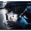 发现白血病患者致命性真菌肺部感染的新方法