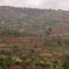 埃塞俄比亚发现的结核病菌株令人惊讶的多样性