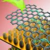 为干细胞创造了更好的生物传感器技术
