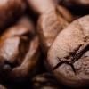 咖啡提取物可改善胰岛素敏感性