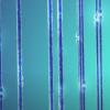 如果肌动蛋白丝被切断 也可以修复切断的神经