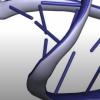甲基化MicroRNA识别癌症生物标志物
