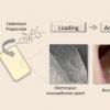 研究人员开发出粘在口腔内的粘液黏贴膏药