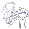发现雄性果蝇精液中的肽增强了交配后雌性的记忆