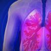 研究人员发现肺细胞对细菌的反应