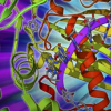 microRNA在细胞核基因表达中的作用可能促进基因治疗