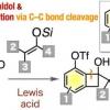 一个好的反应性环 各种芳族化合物的新合成途径