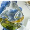 微生物群在维持地球和我们身体健康的自然过程中起着至关重要的作用