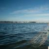 在西班牙 营养物质如何毒化了欧洲最大的咸水湖之一