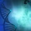 积累有用的基因如何帮助老酵母在艰难时期表现更好