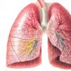 肺健康研究发表在顶级呼吸杂志上