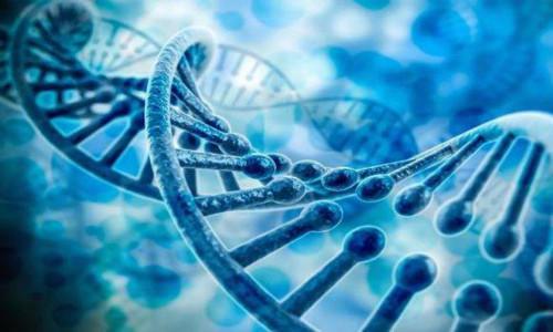 纳米容器可以滑入细胞内并提供药物 基因疗法