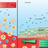 工程益生菌增强粘膜愈合