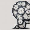 内部大脑计时器与动机和行为相关