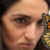 研究小组发现帝王蝶中维生素A与大脑反应之间存在关联
