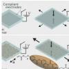 形状可编程介电液晶弹性体执行器