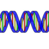 在线工具可帮助患者揭开基因组测序的潘多拉魔盒神秘面纱