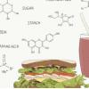 弄清食物中的化学物质可以改善我们如何管理健康