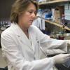 父亲的X染色体可能为女性自身免疫性疾病发病率上升提供线索