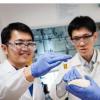 科学家利用阳光将塑料转化为有用的化学物质