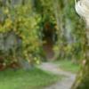 甲状腺功能低下的老年人面临更高的死亡风险