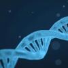 此类最大的研究表明 许多精神疾病是由共同基因引起的