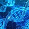 如果得到遗传学的支持 新药更可能被批准