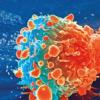 验血可以迅速将晚期乳腺癌患者与靶向治疗相匹配