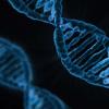 转向遗传学来治疗小小的心灵
