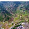 研究发现中国植物生物多样性受到人类活动的威胁