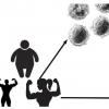 免疫系统的变化解释了为什么腹部脂肪不利于思考