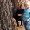 研究表明 早期接触狗可能会降低患精神分裂症的风险